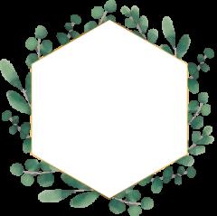 eucalyptus_wreath01.png